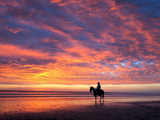 Horseback beach sunset
