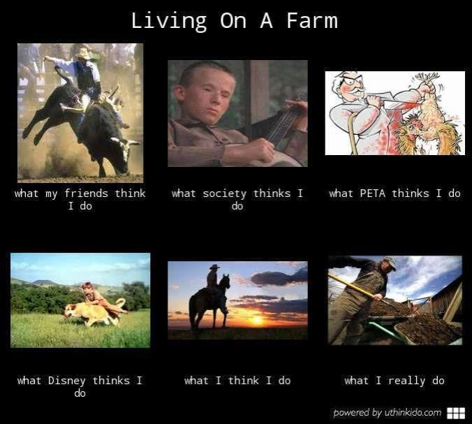 Living on a Farm